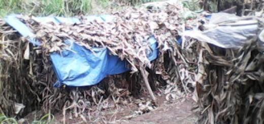 Hutte des déplacés cachés en foret. Photo GADHOP