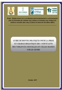 Photo couverture Guide des Bonnes pratiques en matière de PEC des VS
