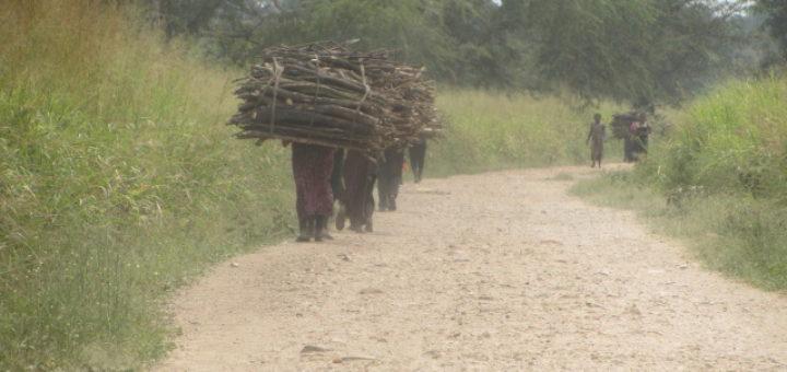 Des femmes qui font le stock en bois de ménage. Photo GADHOP Com